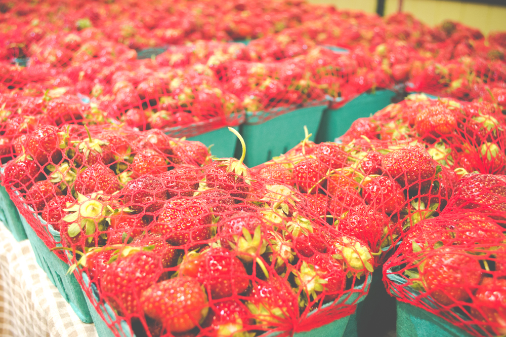 Things to Do in Ohio: White House Fruit Farm in Canfield, Ohio