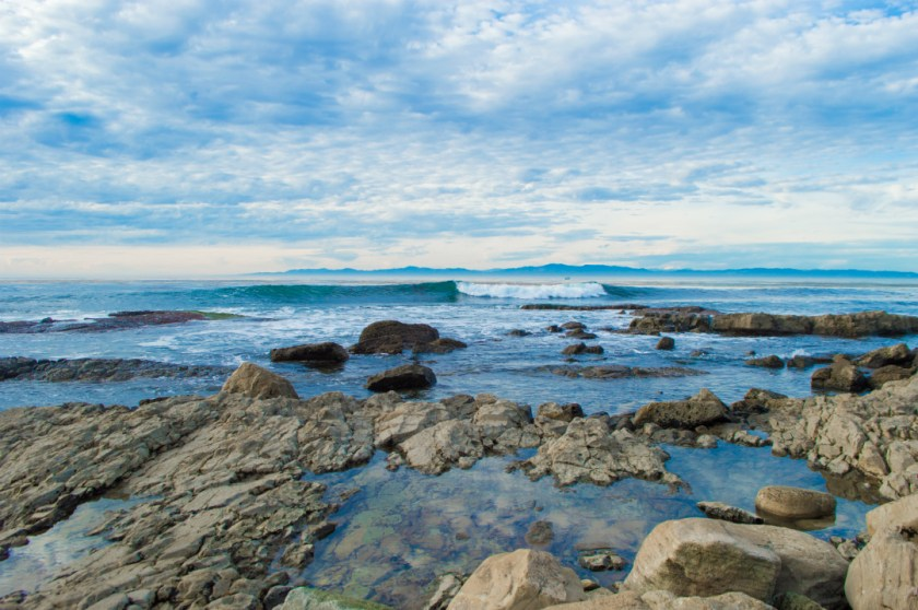 Los Angeles Beach Guide: Abalone Cove