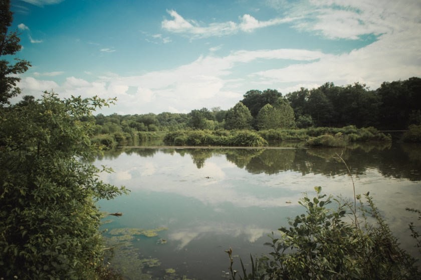 Mill Creek Park in Youngstown, Ohio: Lake Newport
