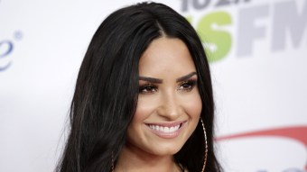 Demi Lovato's New Song Takes Aim At The Political System