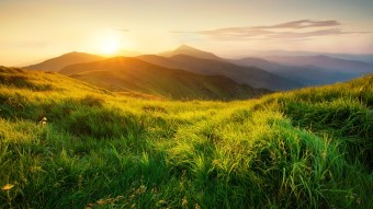 Top 10 Greeniest Countries In The World