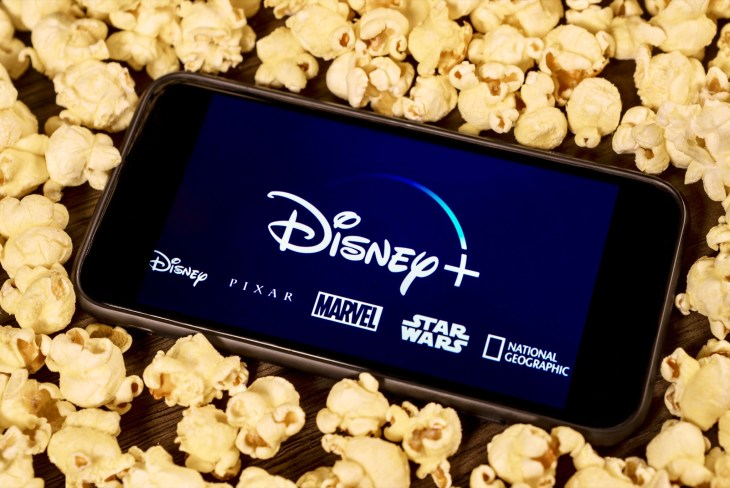 Disney Plus Streaming Service