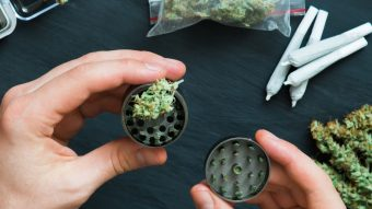 Protected: What Is A Weed Grinder Used For