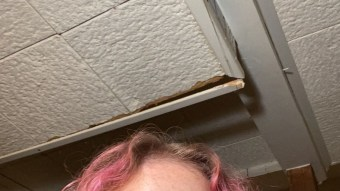 I Dyed My Hair Pink For The Summer
