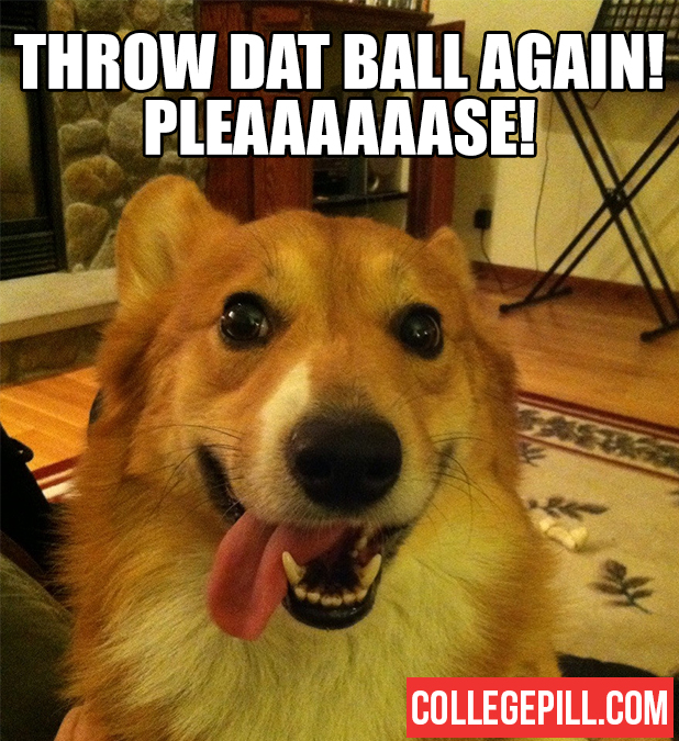 throw-dat-ball