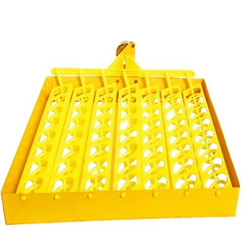 incubator tray