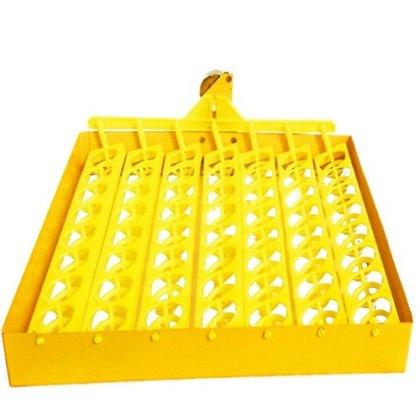 incubator try 56 eggs