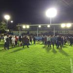 Late UCD Comeback Retains Rugby Colours to Trinity Despair