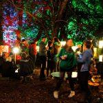 Summer of Sound: Festival Season Highlights