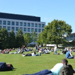 Record Level Grants see UCD's Revenue Grow