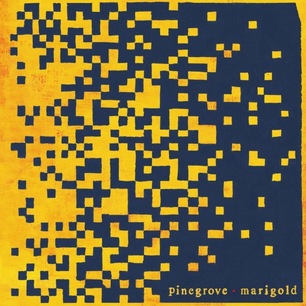 Pinegrove-Marigold_-_Hi_Res-min_1290_1290