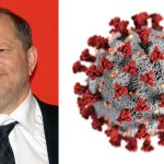 #MeWho?: How the Coronavirus Pandemic Has Overshadowed Harvey Weinstein's Conviction