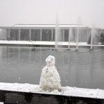 Leo Varadkar Cancels Snow Day | Turbine