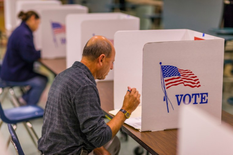 Voter in the poll booth