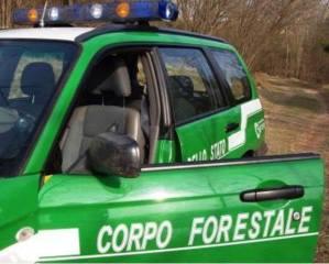 Lungo inseguimento tra la vettura del Corpo Forestale e quella con a bordo i due malviventi