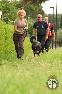 Il mantrailing, disciplina di fiuto e attenzione da parte del cane.  (Alice e Eevee a un seminario NEMESI e NBTI)