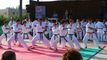 esibizione di karate
