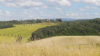 colline campi Guasticce