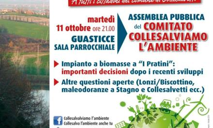 "COLLESALVIAMO L'AMBIENTE VERSO ""IMPORTANTI DECISIONI"""