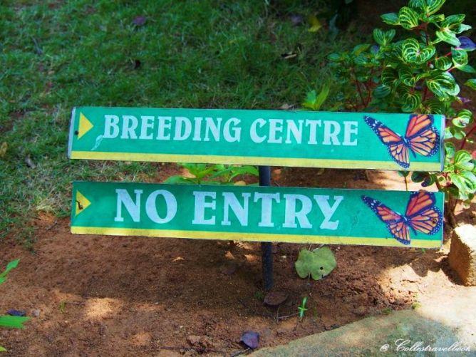 No Entry - Diesen Hinweisschildern sollte man lieber Folge leisten.