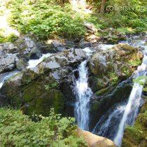 Sol Duc Falls August