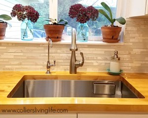 DIY Kitchen Remodel Hahn kitchen sink