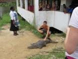 Croc Sanctuary 5