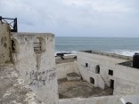 Elmina 8