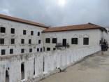 Elmina 15