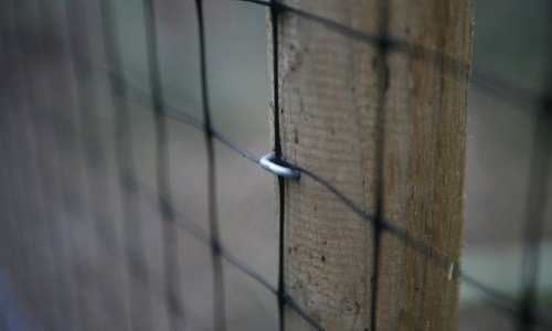 Release Pen Netting Stapled