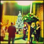 Day 24: Tradition/Something You Always Do. Go to Christmas Eve mass.
