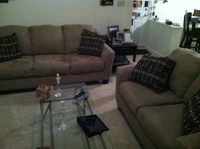 new-couch-loveset-set