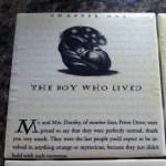 Harry Potter Tile Coasters