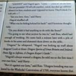 HarryPotter-SorcerersStone-coasters-6