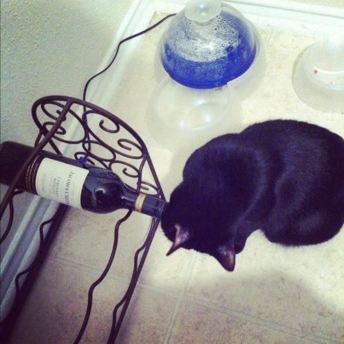 Zoe-wine-bottle