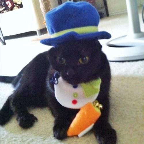 zoe-snowman-costume
