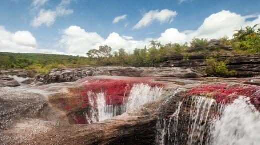 Natuurwonder Caño Cristales na zes maanden weer toegankelijk voor toerisme