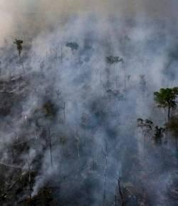 7 landen ondertekenen Amazone-pact in Colombia