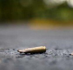 65 milieuactivisten vermoord in 2020