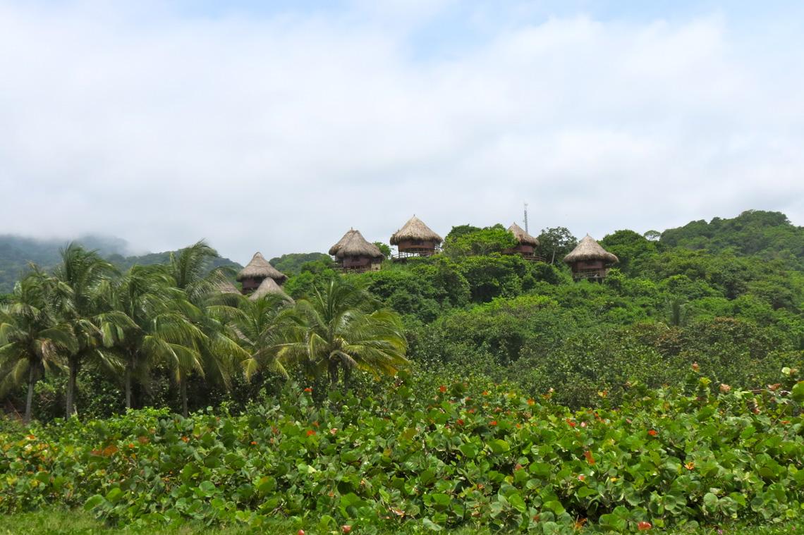 Jungle nabij Santa Marta