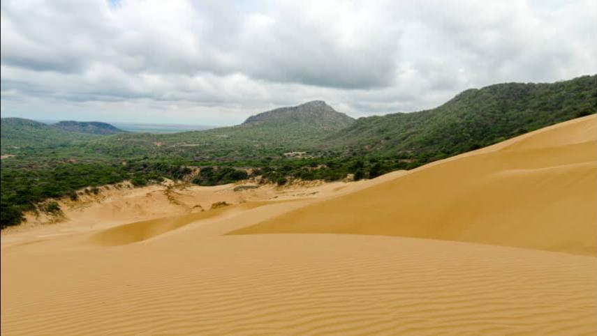 Macuira National Park