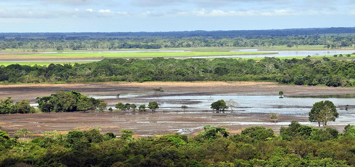 Los llanos grasvlaktes in Colombia