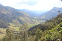Overview of the Cocora Valley