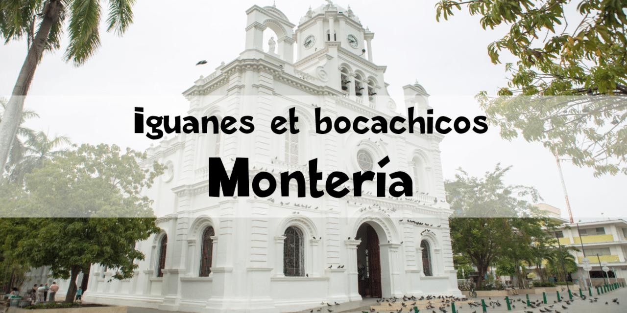 Montería : iguanes, poissons et Río Sinú