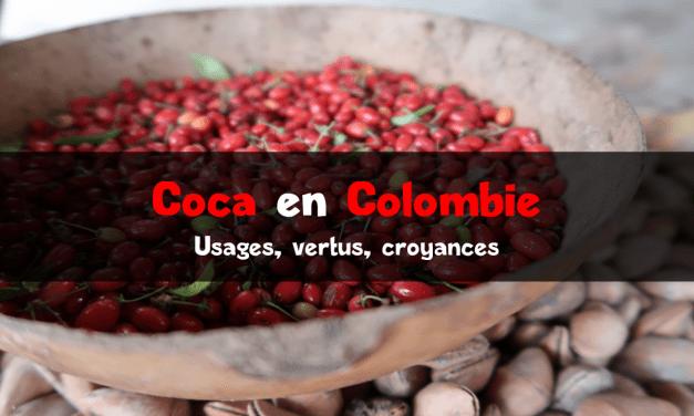 Les vertus de la coca (Colombie)