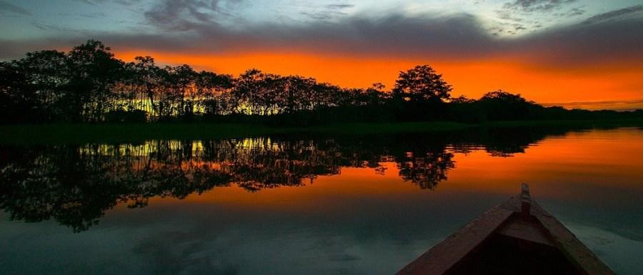 La belleza del Amazonas.