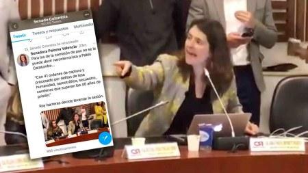 senado perfil twitter senadora paloma valencia