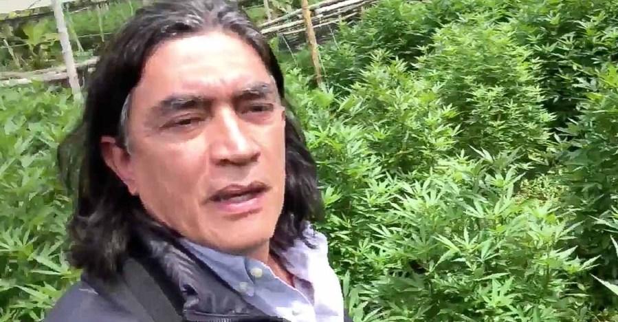 Bolívar radicará proyecto de ley para legalizar el consumo de marihuana en  Colombia