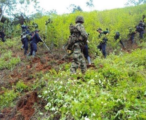 Fuente: Ejército Nacional de Colombia. Agosto 2011