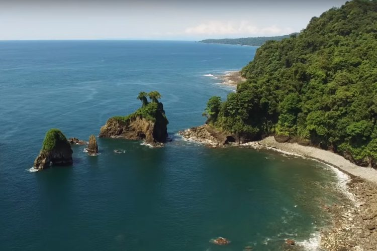 Utria National Natural Park - Nuqui Choco - Colombian Pacific - Tourist Plans - ColombiaTours